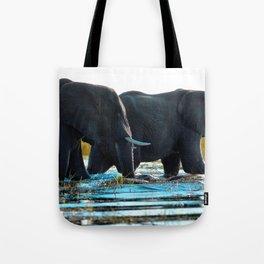 Elephants (Color) Tote Bag