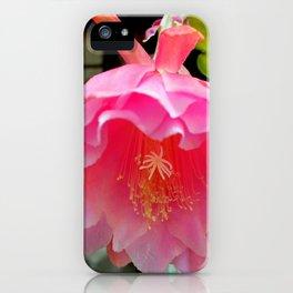Ballerina's Pink Tutu iPhone Case