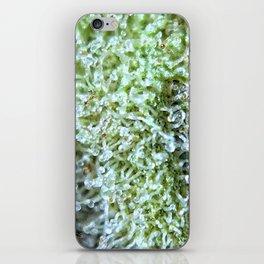 GG#4 iPhone Skin