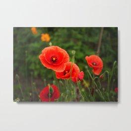 Flower_41 Metal Print