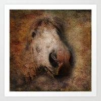 Vintage portrait of the horse Art Print