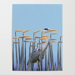 camouflage Poster
