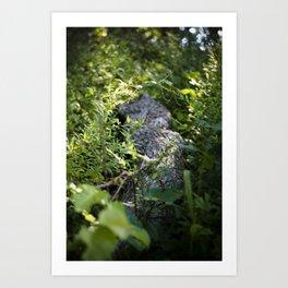 Overgrown Log Art Print
