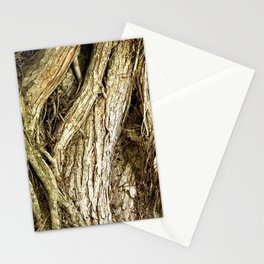Majestic Gnarled Ficus Tree Trunk and Aerial Roots Texture Stationery Cards
