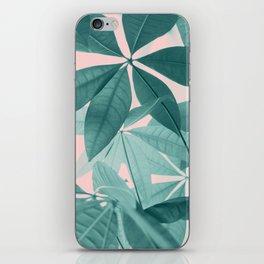 Pachira Aquatica #5 #foliage #decor #art #society6 iPhone Skin