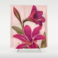 vintage floral Shower Curtains featuring Vintage Floral by 83 Oranges™