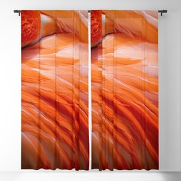Pink Feathers Blackout Curtain