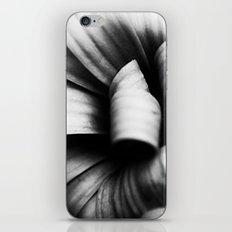 Desaturated Daisies iPhone & iPod Skin