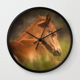 Cute Foal Laying Down Wall Clock