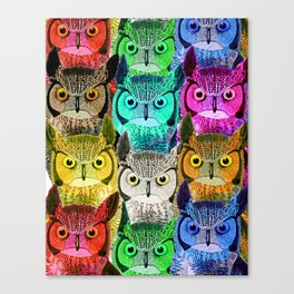 How do owls see in the dark... Canvas Print