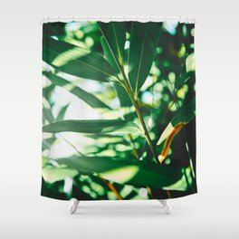 Layers Of Green Tea Leaves In The Sunlight Shower Curtain