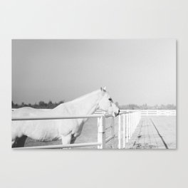 Snowflake II Canvas Print