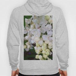 White Lilacs Hoody