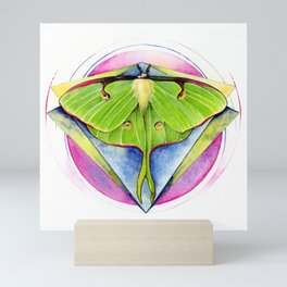 Actias luna - Luna Moth Mini Art Print
