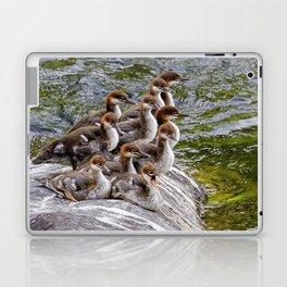 10 Little Mergansers on a Rock Laptop & iPad Skin