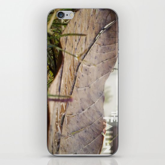 Dew drops on a fallen leaf iPhone & iPod Skin