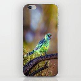 Mallee Ringneck Parrot iPhone Skin