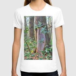 Portal To Wonderland T-shirt