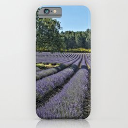 Lavender fields, Provence, France iPhone Case