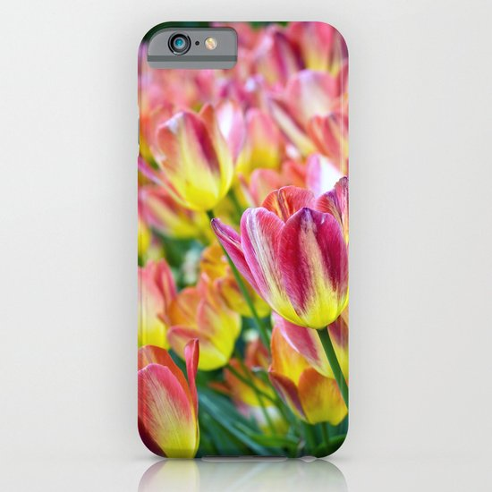 The Last Hurrah of Spring iPhone & iPod Case