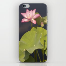 Lotus Flower by Teresa Thompson iPhone Skin