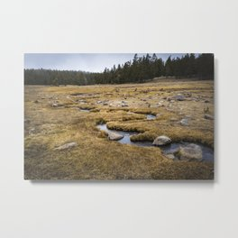 A little creek in a Big Meadow Metal Print