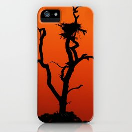 Eagle's Roost iPhone Case