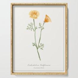 California Poppy Watercolour Botanical Serving Tray