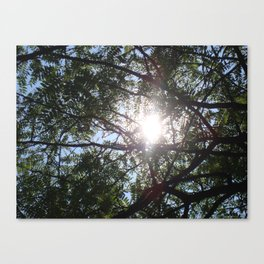 Inspired Canvas Print