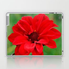 Dahlia 'Bishop of Llandaff' Crimson Red Flower Laptop & iPad Skin