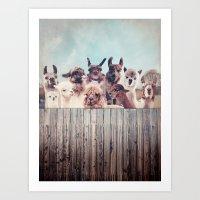 HAPPY FAMILY - ALPACA & LLAMA Art Print