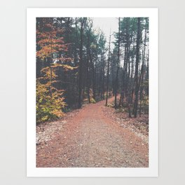 Autumn 17 Art Print