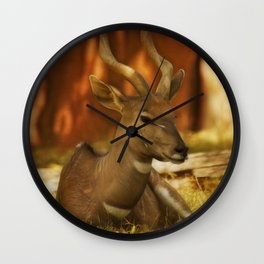 Nyala 3 Wall Clock