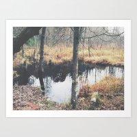 Autumn 8 Art Print