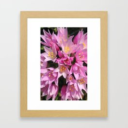 Tropical Pink and Yellow Flowers Framed Art Print