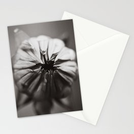 Ready to Bloom Stationery Cards
