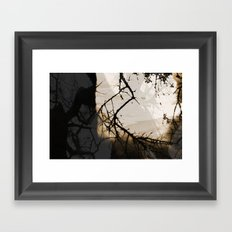 I Dream Of Better Framed Art Print