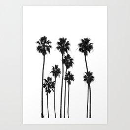 Palm Tree Noir #41 Art Print