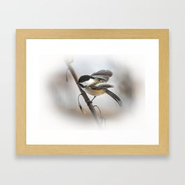 January Chickadee Framed Art Print