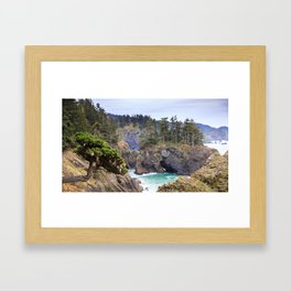 A Tree Clings to the Cliffside in the Samuel H. Boardman State Scenic Corridor Framed Art Print
