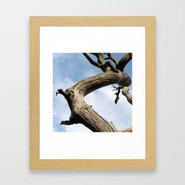 Jabberwock Framed Art Print