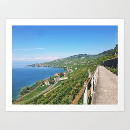 Vineyards of Epesses, Switzerland Art Print