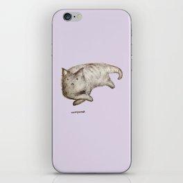 Unimpressed Cat iPhone Skin