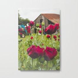 poppies on the farm II Metal Print