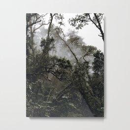 into the wild ii Metal Print