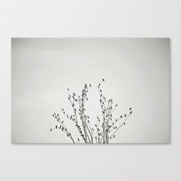 Room for everyone. Canvas Print