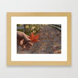 Fall is Beautiful Framed Art Print
