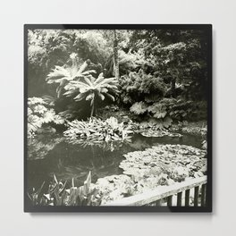 The Lost Gardens of Heligan in Black and White Metal Print