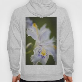 First flower of Spring time Hoody