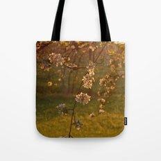 Golden Light over Apple Blossoms Tote Bag